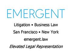Emergent Law